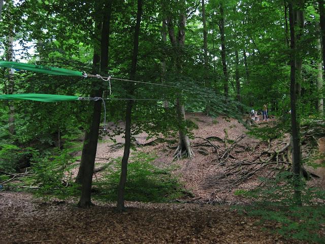 Forest Kindergarten Zip Line