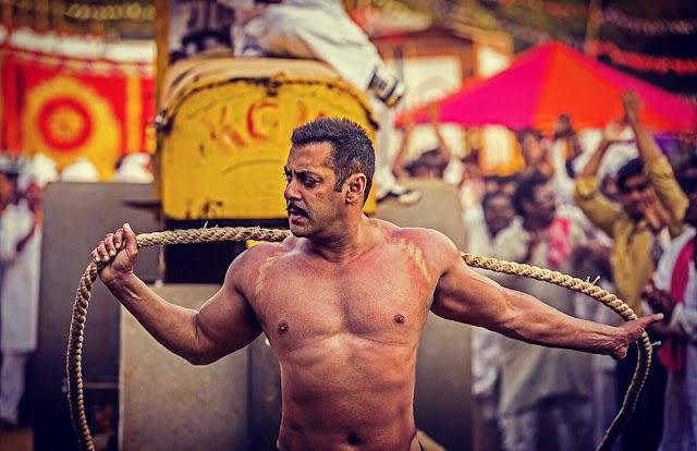 Sultan Full Movie Watch Online