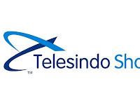 Lowongan Kerja PT. Telesindo Shop