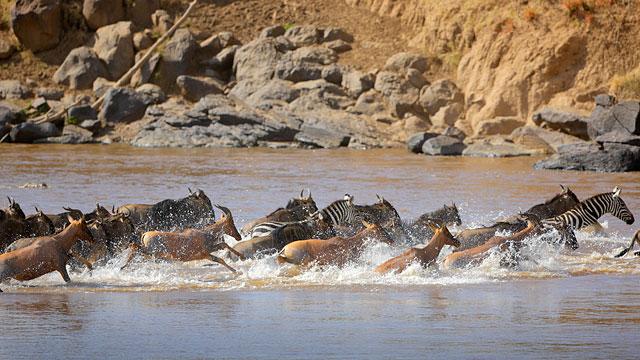 http://www.alamany.com/activities/viaje-fotografico-Kenia.htm