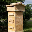 DIY Beehive Construction Plans
