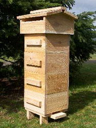 How to build a homemade beehive