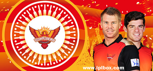 IPL 2017:- Sunrisers Hyderabad    Squad strengths, weakness and prediction ~ iplbox