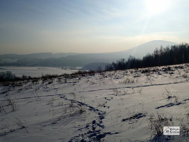 Wzgórze Sas