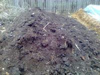 gunoi de grajd descompus
