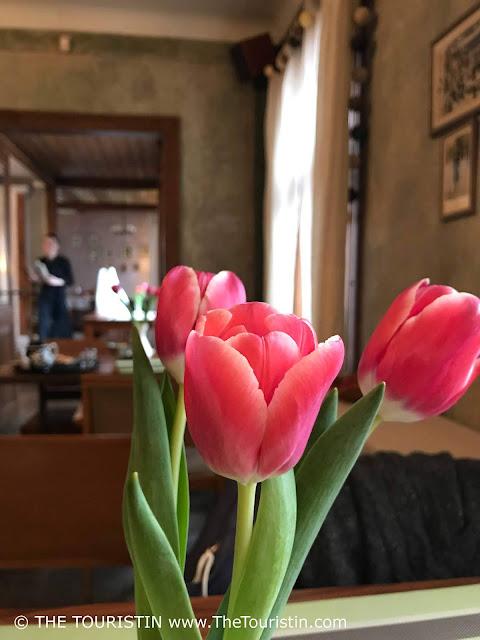 Maja. Kalnciema iela, Zemgales priekšpilsēta, Rīga, , Latvia. tulips
