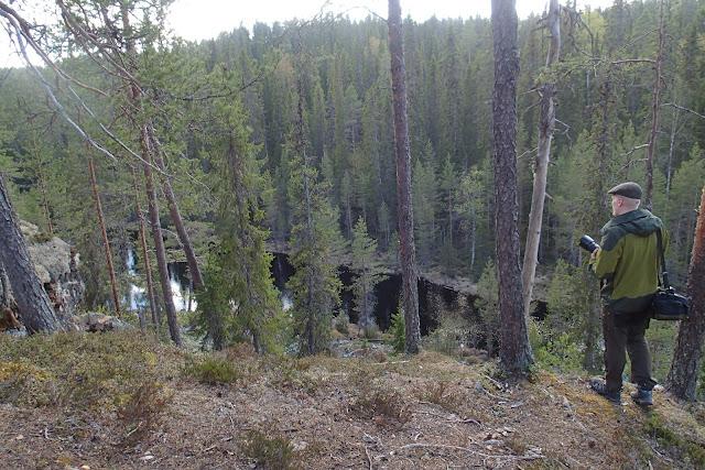 Henkilö katsomassa maisemia korkean töyrään päältä alas jokilaaksoon ja metsään