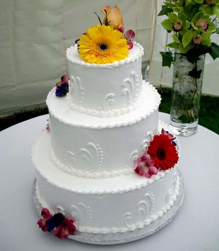Simple Wedding Cakes 67 Nice Easy Wedding Cakes Easy