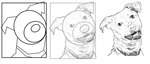 kalemle köpek nasıl çizilir