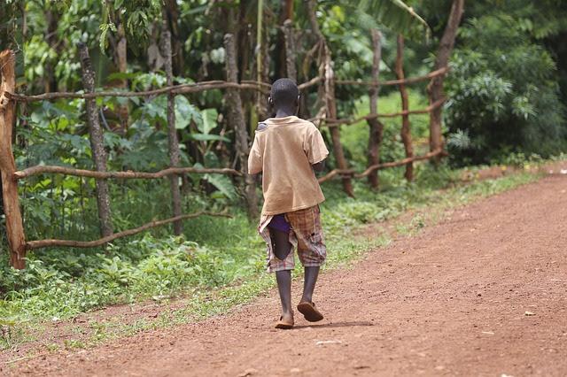 Сегодня 535 миллионов детей, то есть, каждый четвертый ребенок в мире, живет в условиях чрезвычайной ситуации без доступа к нормальному питанию, медицинскому обслуживанию, образованию и защите.