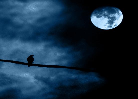 Puisi jejak sunyi