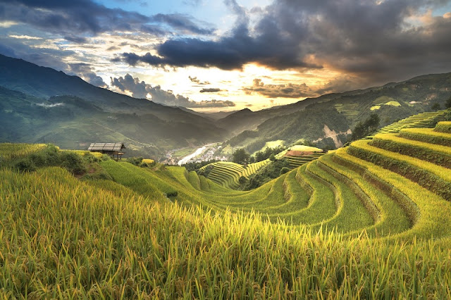 Northwest of September & the paradise of terraced fields 2