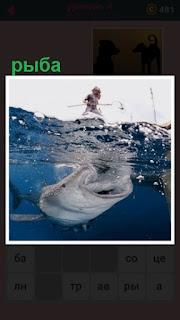 651 слов ловить рыбу под водой 4 уровень