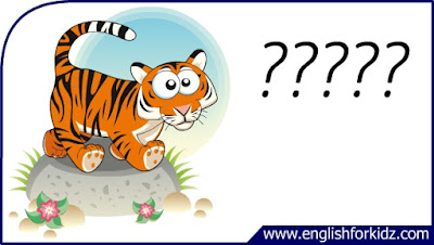 tiger flashcard, single word