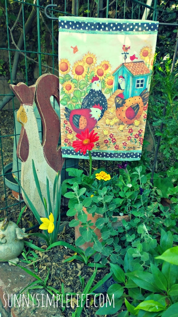 week in the garden and coop, flowers at coop entrance, cottage garden