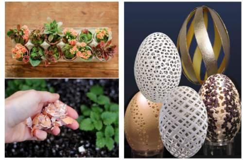 15 Surprising Uses For Eggshells