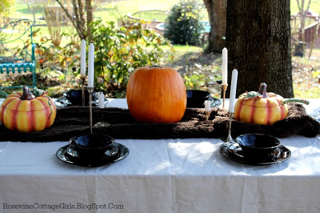 Side view of a dinner table outside in the fall. Table with canvas tablecloth, brown fur table runner, pumpkins down center with silver candlesticks and black dishes.