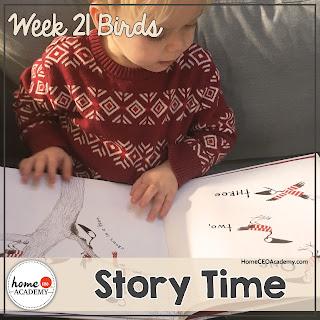 https://www.teacherspayteachers.com/Product/Birds-Preschool-Unit-Printables-for-Preschool-PreK-Homeschool-Preschool-3590816