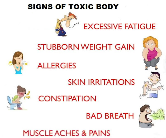 What toxins build up can do to your body