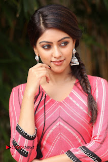 Actress Anu Emmanuel Pictures at Majnu Success Meet  0008.JPG