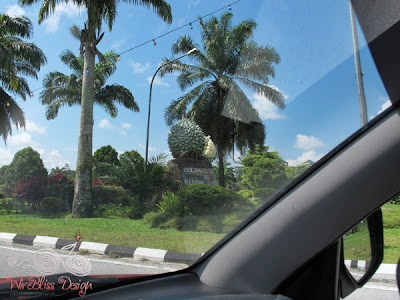 Giant durian by the roadside of Serian