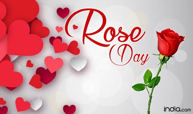 Sweet Rose  Day Images Pics HD