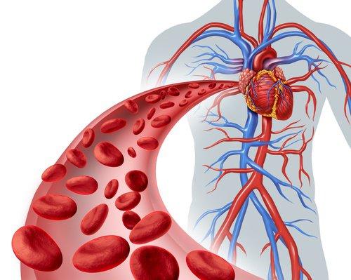 MTC.: El Bazo controla la sangre