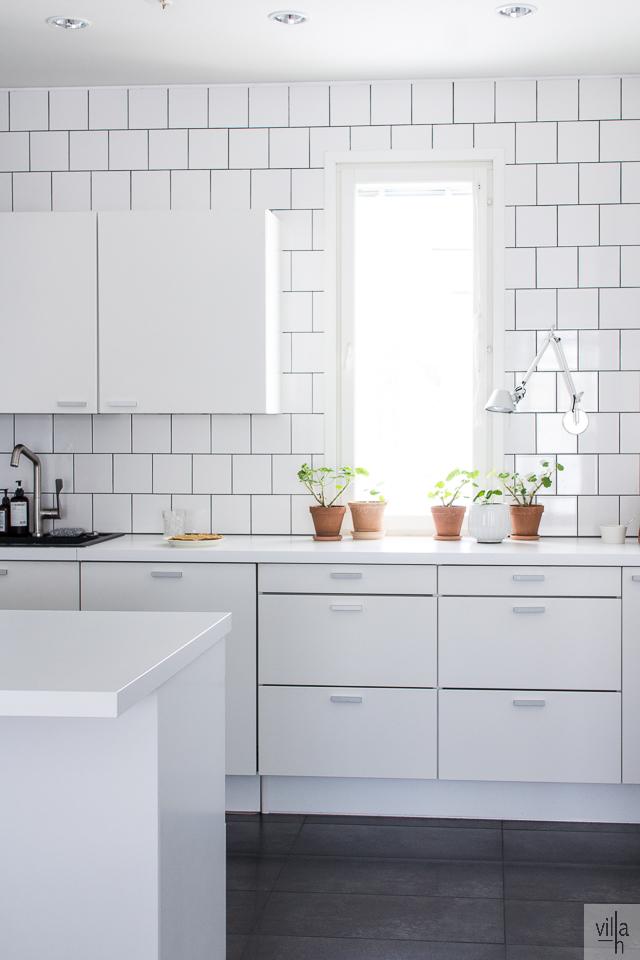 sisustus, viherkasvit, keittiö