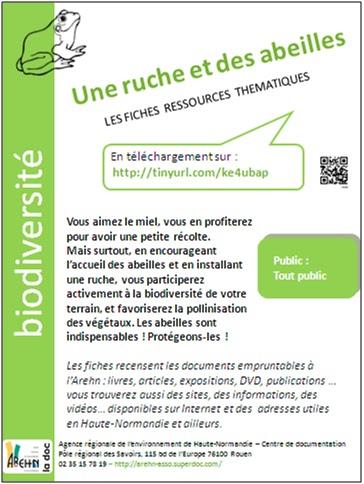 Connu Les petites infos de la doc de l'ARE Normandie: L'abeille est  UC45