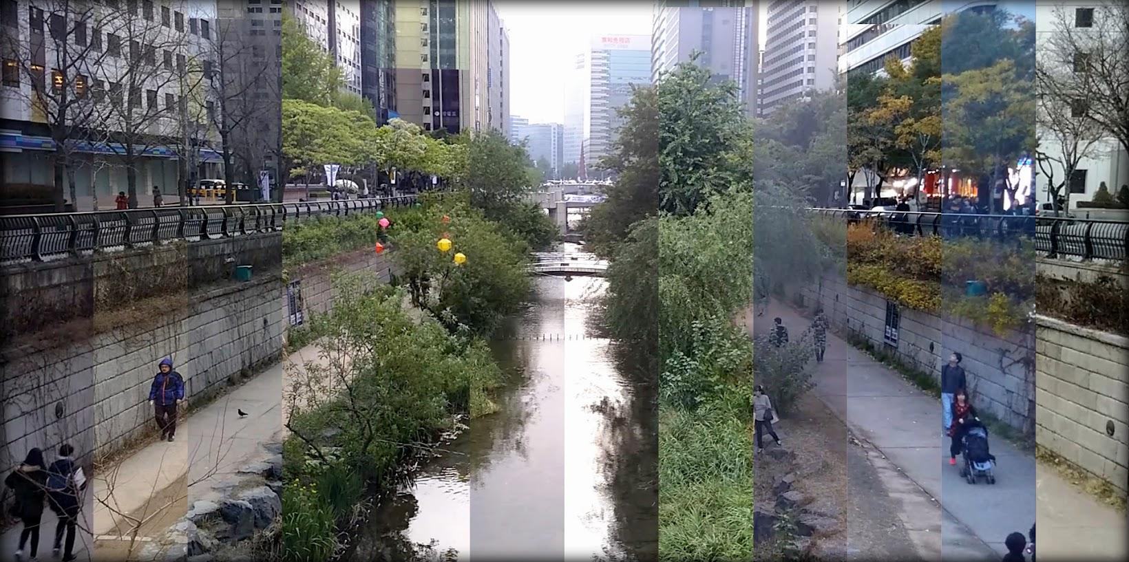 12 meses en el arroyo Cheonggyecheon de Seúl