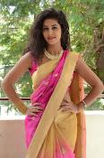 pavani new photos in saree-thumbnail-29