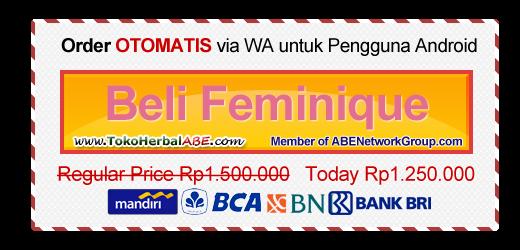 beli-feminique-lingerie-langsing-tanpa-obat