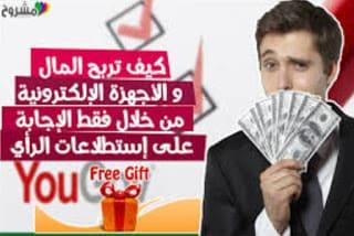 ربح المال عن طريق الاستطلاعات والعروض المجانية