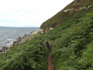 Kis ösvény a King's Cave felé