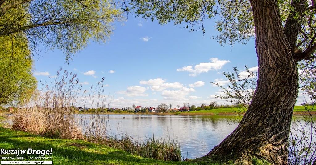 Sztumskie jezioro na Powiślu