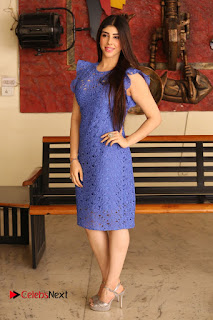 Actress Aditi Singh  Pictures in Short Dress at Movie Interview  0315.JPG