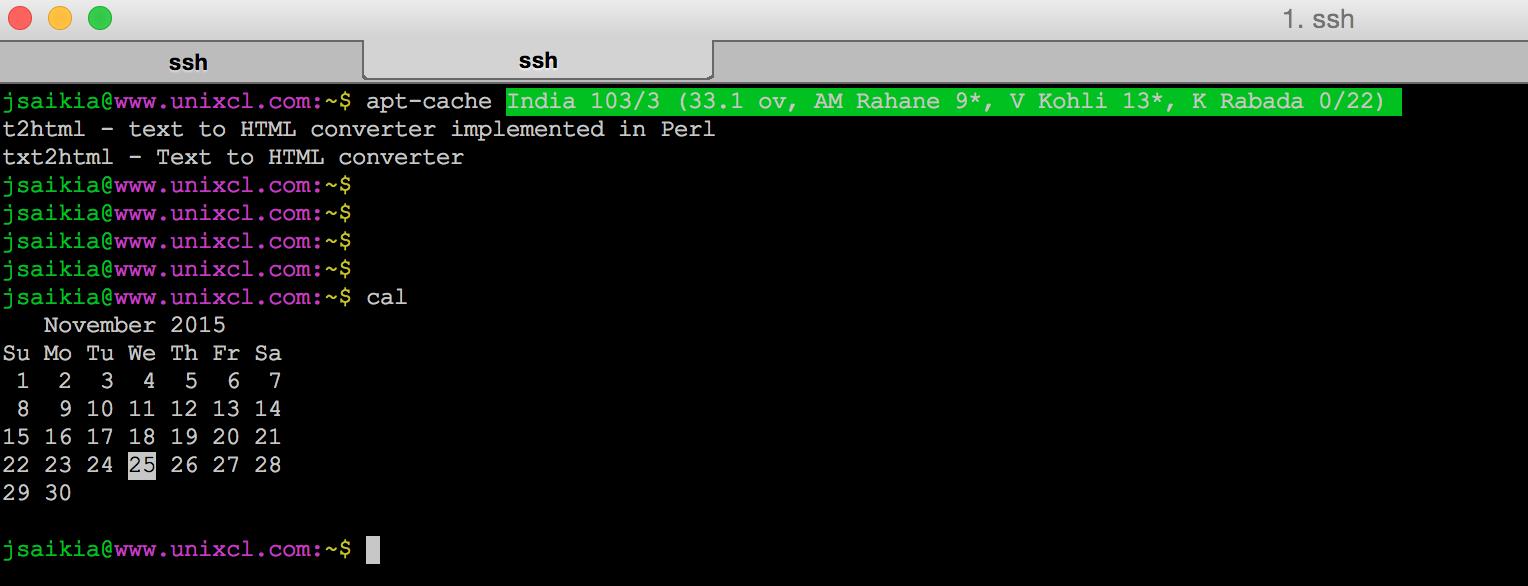 UNIX Command Line: Display cricket score on Unix Terminal