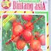 Benih Citra Asia Sayuran Tomat Natama Super F1