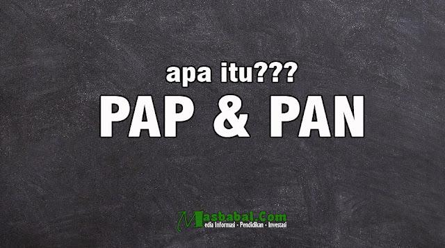 Pengertian PAN adalah. Pengertian PAP dalam pendidikan. Apa itu PAP dalam penilaian. PAN adalah penilain kemampuan kelompok, PAP adalah pengukuran