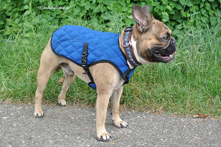 Aqua Coolkeeper Hunde Kühljacke Kühlweste