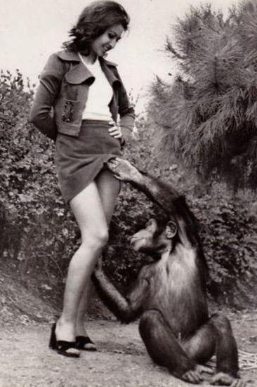 Punca Getting Zajebal S Monkey Pictures - Porno Pics In Filmi-4769