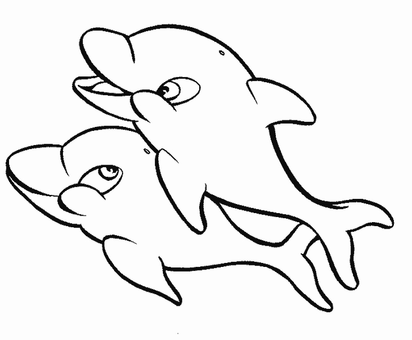 dolphins coloring pages printable | Free Coloring Pages Of Dolphins To the Print