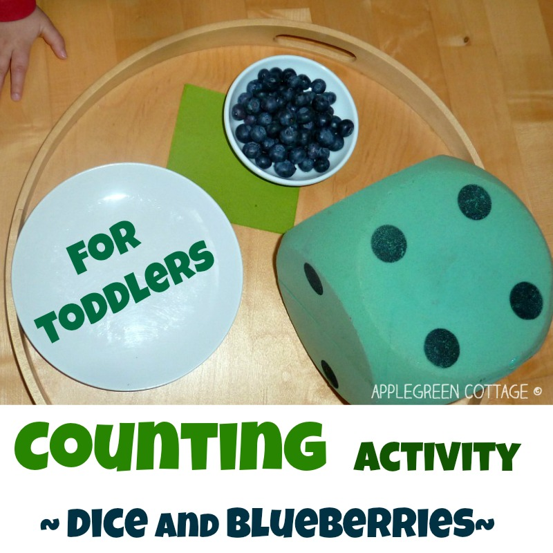 dice counting game with blueberries