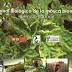 Manual gratis de Control Biológico de la Mosca Blanca.pdf