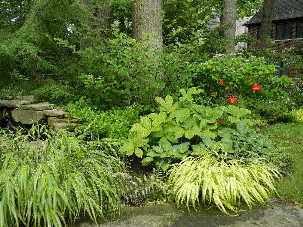 Forest Garden Design Uk