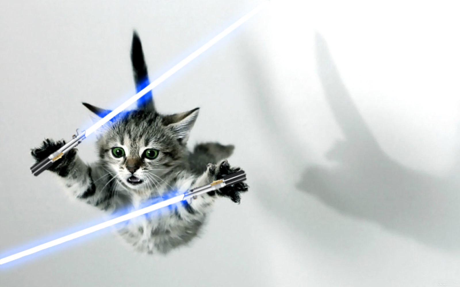 Cats With Lightsabers | www.pixshark.com - Images ...