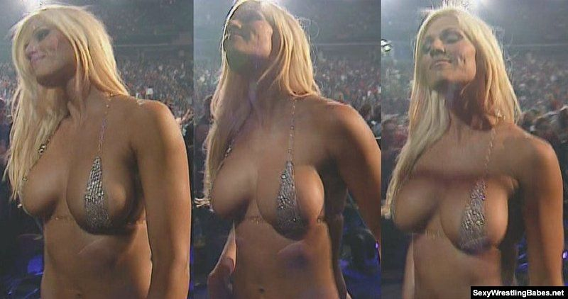 Something is. Torrie Wilson boobs apologise