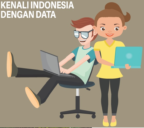 Knowing Indonesia Through Data Accuracy