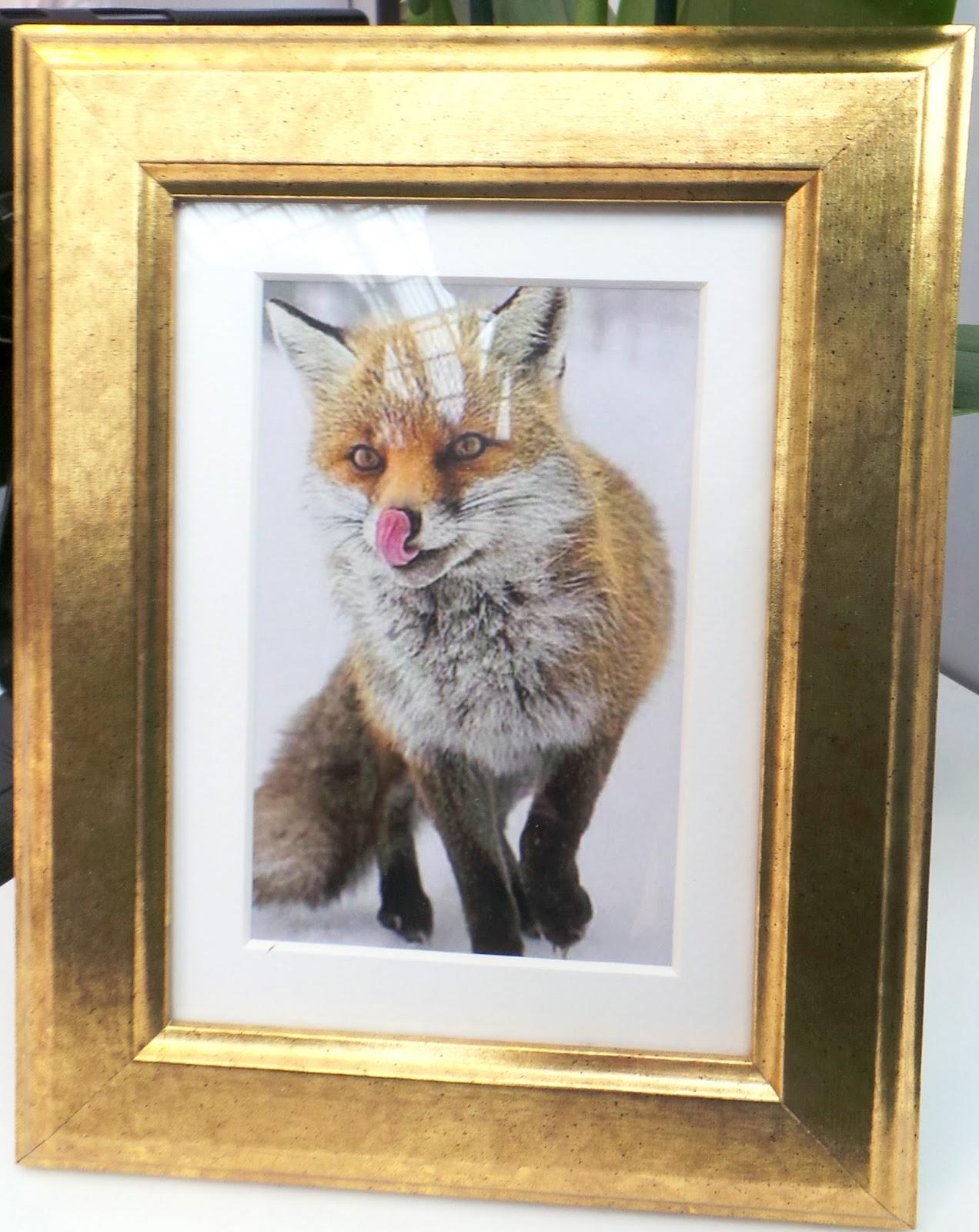 Yann Couvreur  il va ouvrir d\u0027ici un mois sa pâtisserie, son sigle est ce  petit renard. Des photos pour découvrir ce bon moment passé et de belles