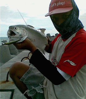 Tips Casting Ikan Kuro - ikan Senangin- Baleng-Surung